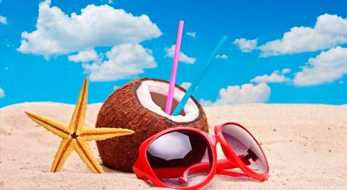 summer food and holiday