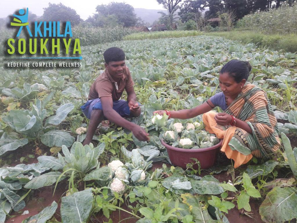 farmers day, kishan day